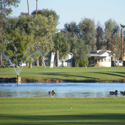 Desert Trails RV Resort & GolfCourse