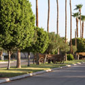 Desert Trails RV Resort & Golf Course